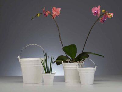 Porzellaneimer Porzellankübel mit Henkel - Tischeimer - Kübel - Bucket - Porzellan